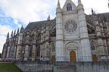 Orléans Cathedral, Orleans, France