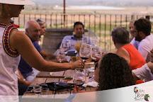 Aha Baja Wine Tours, San Diego, United States