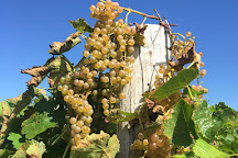 Oceana Winery and Vineyard, New Era, United States
