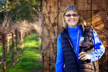 Herb Lamb Vineyards, St. Helena, United States