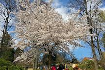 Japanischer Garten (Japanese Garden), Kaiserslautern, Germany