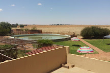 Zanchieta Lodge and Wild Cat Reserve, Bloemfontein, South Africa