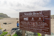 Seaside Beach, Fort Bragg, United States