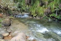 Morere Hot Springs, Morere, New Zealand