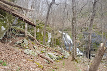 Jones Run Falls Trailhead, Shenandoah National Park, United States