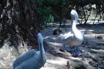 Le Jardin Aux Oiseaux, Upie, France