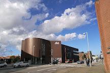 Lido Biograferne, Vejle, Denmark