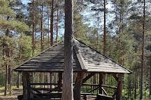 Harku Forest Nature Trail, Tallinn, Estonia