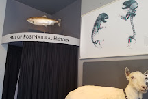 Center for PostNatural History, Pittsburgh, United States