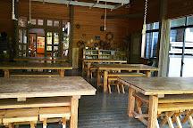Ueno Forest Park Visitor cottage, Iga, Japan