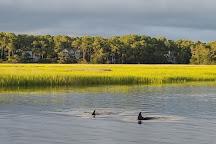 Anomaly Charters, Oak Island, United States
