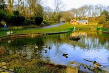 Northumberland Park, North Shields, United Kingdom