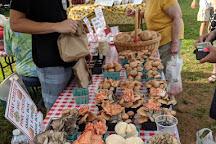 Historic Lewes Farmers Market, Lewes, United States