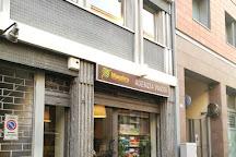 Maestro Travel Experience, Parma, Italy