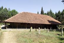 Gogceli Camii - Tarihi Ahsap Civisiz Cami, Samsun, Turkey