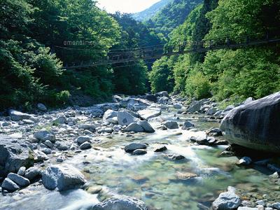 川 オロナミン c cm