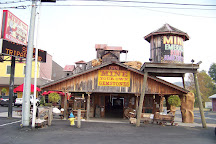 Pigeon Forge Gem Mine, Pigeon Forge, United States
