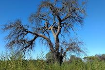 Reserva Natural Urbana la Malvina, Santa Rosa, Argentina
