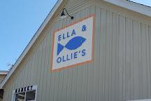 The Plantation Course at Edisto, Edisto Island, United States