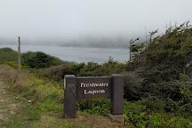 Freshwater Lagoon, Orick, United States