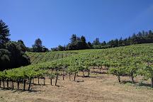 Storybook Mountain Vineyards, Calistoga, United States