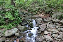 Old Rag Mountain Hike, Shenandoah National Park, United States