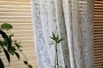 Linobalt. Льняные ткани. Магазин-салон. Интернет-магазин., Пушкарский переулок на фото Санкт-Петербурга