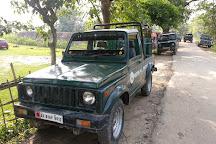 Pobitora Wildlife Sanctuary, Guwahati, India