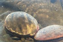 Petty Harbour Mini Aquarium, Petty Harbour, Canada
