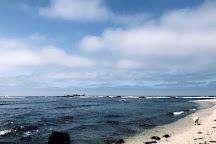 Mavericks, Half Moon Bay, United States