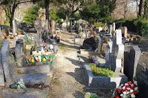 Cemetery of the Dogs (Cimetiere des Chiens), Asnieres-sur-Seine, France