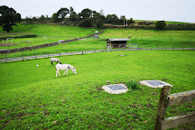 Lakeland Maze Farm Park, Kendal, United Kingdom