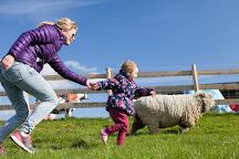 Tapnell Farm Park, Yarmouth, United Kingdom