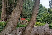Highnam Court Gardens, Highnam, United Kingdom