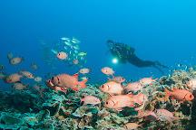 Diving Poseidon, Nungwi, Tanzania