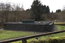 Minotaur Maze, Kielder, United Kingdom