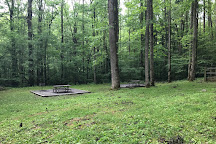 Greenbrier Picnic Area, Great Smoky Mountains National Park, United States