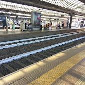 Станция  Milano Rogoredo