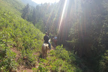 Action Adventures Trail Rides, Ouray, United States