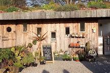 Tremenheere Sculpture Gardens, Penzance, United Kingdom