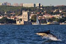 Lisbon Dolphins, Lisbon, Portugal