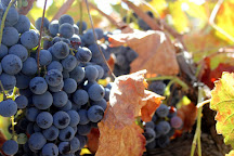 Iron Hub Winery, Plymouth, United States