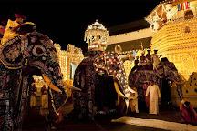 Vishwa Colombo Tours, Colombo, Sri Lanka