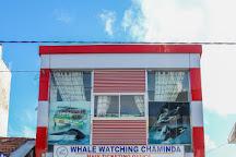 Whale Watching Chaminda, Mirissa, Sri Lanka