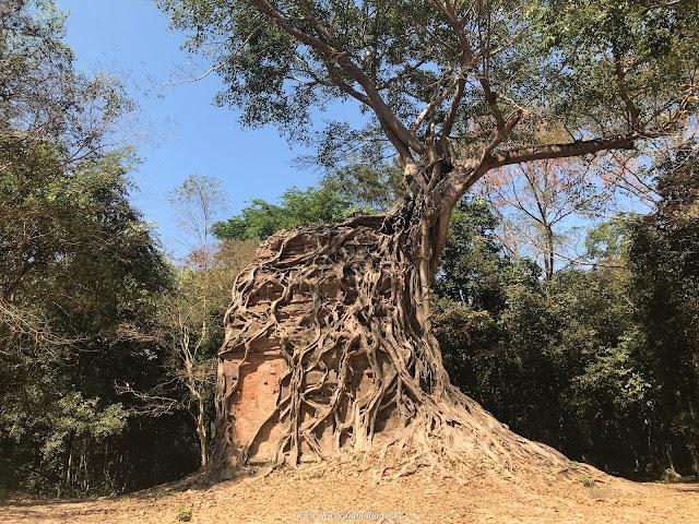 Daem Chrei Temple