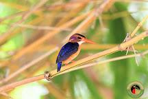 The Sustainable Birding Company, Nairobi, Kenya