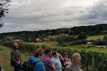Lily Farm Vineyard, Budleigh Salterton, United Kingdom