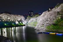 Chidorigafuchi, Chiyoda, Japan