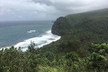 Flumin' Kohala, Hawi, United States