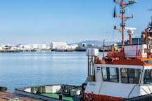 Special Tours, Reykjavik, Iceland